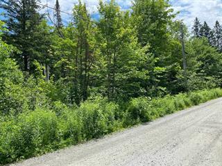 Lot for sale in Val-des-Monts, Outaouais, 166, Chemin  Lafrenière, 12913134 - Centris.ca
