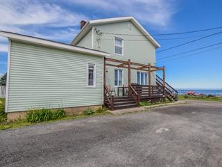 House for sale in Sainte-Anne-des-Monts, Gaspésie/Îles-de-la-Madeleine, 197 - 199, 2e Avenue Ouest, 19517606 - Centris.ca