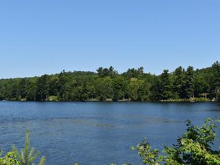 Terrain à vendre à Gore, Laurentides, Chemin du Lac-Sir-John, 14041960 - Centris.ca