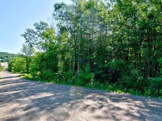 Terrain à vendre à Sainte-Béatrix, Lanaudière, Avenue des Pins, 21236775 - Centris.ca