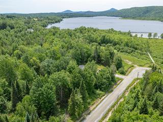 Terrain à vendre à Stanstead - Canton, Estrie, Chemin du Ruisseau-Gale, 15038044 - Centris.ca