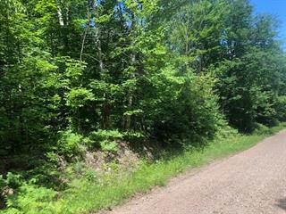 Terrain à vendre à Otter Lake, Outaouais, Chemin du Ranch, 16261560 - Centris.ca