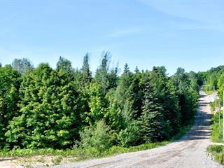 Terrain à vendre à Sainte-Béatrix, Lanaudière, Avenue des Pins, 24409946 - Centris.ca