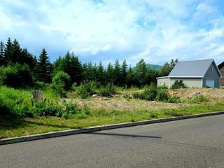 Lot for sale in Notre-Dame-des-Monts, Capitale-Nationale, 34, Rue du Jardin, 14438506 - Centris.ca