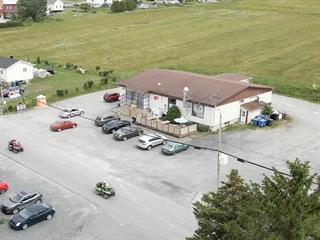 Commercial building for sale in Saint-Robert-Bellarmin, Estrie, 15 - 17, Rue  Lachance, 22664195 - Centris.ca