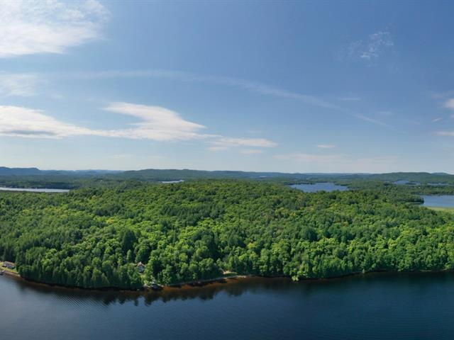 Land for sale in Notre-Dame-du-Laus, Laurentides, Chemin du Cordon, 28670531 - Centris.ca