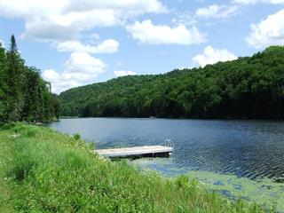 Terrain à vendre à Montcalm, Laurentides, Chemin du Lac-Richer Nord, 22694757 - Centris.ca