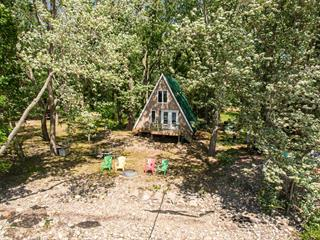 House for sale in L'Isle-aux-Allumettes, Outaouais, 138, Chemin  F, 13714634 - Centris.ca