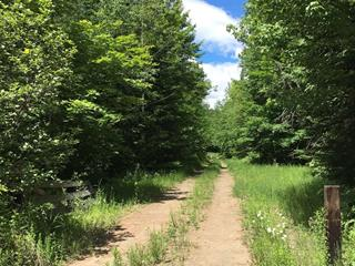 Land for sale in Sainte-Agathe-des-Monts, Laurentides, Chemin de Val-des-Lacs, 11161711 - Centris.ca