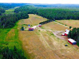 Farm for sale in Otter Lake, Outaouais, 426, Chemin  King, 16671951 - Centris.ca