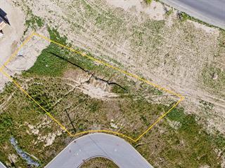 Terrain à vendre à Windsor, Estrie, Rue  Mastine, 19098977 - Centris.ca