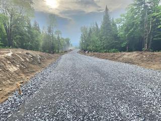 Terrain à vendre à Sainte-Lucie-des-Laurentides, Laurentides, Chemin du Golf, 13320033 - Centris.ca