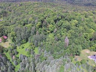 Lot for sale in Morin-Heights, Laurentides, Chemin de Christieville, 17344629 - Centris.ca