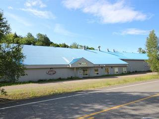 Bâtisse commerciale à vendre à Saint-Élie-de-Caxton, Mauricie, 4091, Route des Lacs, 18713929 - Centris.ca