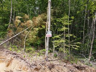 Terrain à vendre à Notre-Dame-de-Pontmain, Laurentides, Chemin de la Nature, 22821747 - Centris.ca