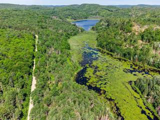 Lot for sale in Thorne, Outaouais, Chemin  Bryson, 26985217 - Centris.ca