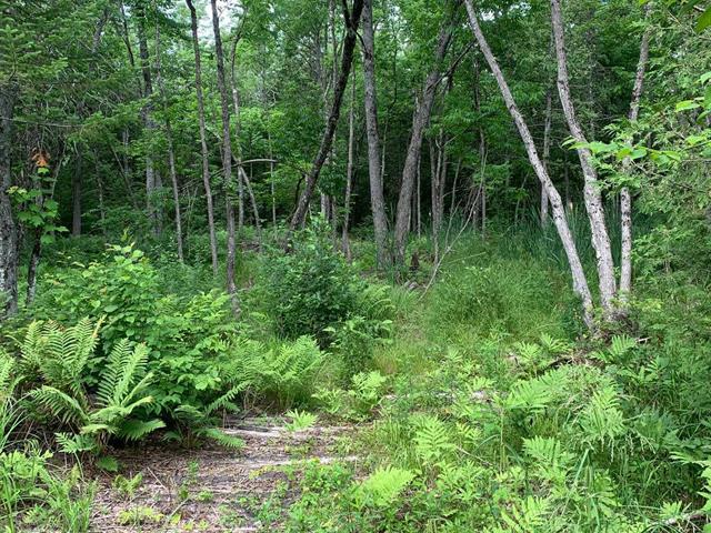 Terrain à vendre à Sherbrooke (Brompton/Rock Forest/Saint-Élie/Deauville), Estrie, 360, Chemin du Lac-Montjoie, 13644354 - Centris.ca
