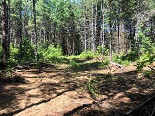 Lot for sale in Thorne, Outaouais, Chemin  Bryson, 28943659 - Centris.ca