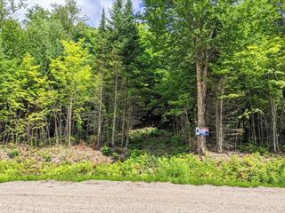 Terre à vendre à Mont-Laurier, Laurentides, Rue  Éléodore-Langevin, 10106477 - Centris.ca