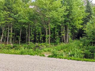 Land for sale in Mont-Laurier, Laurentides, Rue  Éléodore-Langevin, 23890507 - Centris.ca
