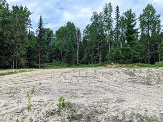 Terrain à vendre à Mont-Laurier, Laurentides, Rue  Joseph-Groulx, 25556674 - Centris.ca
