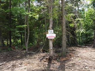 Terrain à vendre à Notre-Dame-de-Pontmain, Laurentides, Chemin de la Nature, 13336101 - Centris.ca