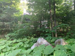Terrain à vendre à Saint-Sauveur, Laurentides, Chemin des Pins Est, 22397865 - Centris.ca