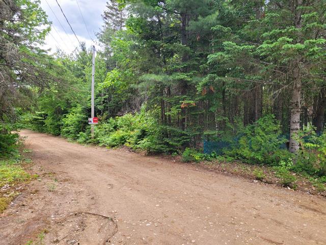 Terrain à vendre à Saint-Élie-de-Caxton, Mauricie, Rue  Charles, 21849701 - Centris.ca