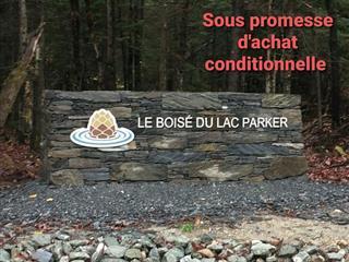 Terrain à vendre à Eastman, Estrie, Rue des Faux-Trembles, 9125522 - Centris.ca