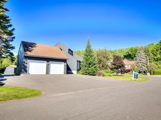 House for sale in Saint-Sauveur, Laurentides, 29, Rue de la Marquise, 28467402 - Centris.ca