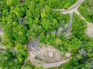 Terrain à vendre à Saint-Mathieu-du-Parc, Mauricie, Chemin de la Presqu'île, 13746408 - Centris.ca