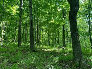 Land for sale in Saint-Jacques-le-Majeur-de-Wolfestown, Chaudière-Appalaches, 4e Rang, 25681400 - Centris.ca