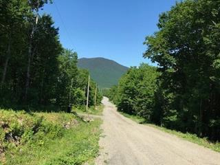 Terrain à vendre à Val-Racine, Estrie, Chemin de la Forêt-Enchantée, 9431210 - Centris.ca