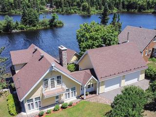 Maison à vendre à Amherst, Laurentides, 222, Chemin du Pavillon, 25311090 - Centris.ca