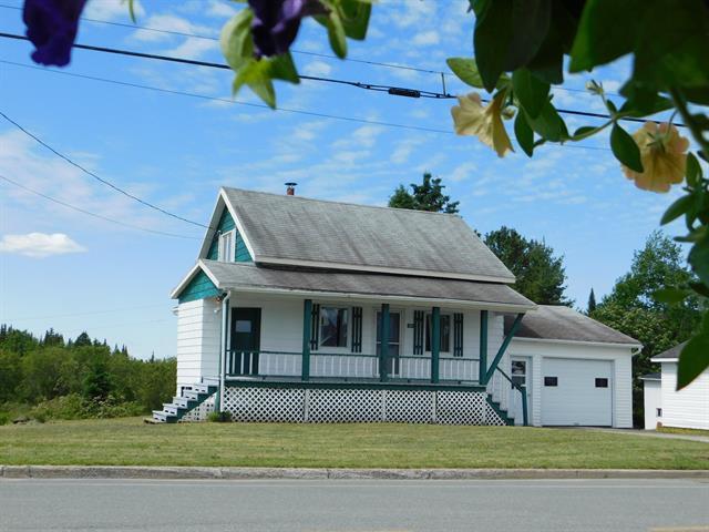 House for sale in Saint-Luc-de-Bellechasse, Chaudière-Appalaches, 166, Rue  Principale, 28520823 - Centris.ca