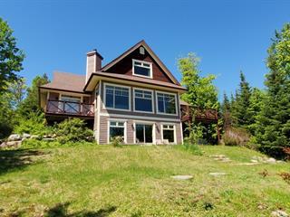 House for sale in Petite-Rivière-Saint-François, Capitale-Nationale, 42, Chemin de la Vieille-Rivière, 17874262 - Centris.ca