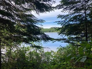 Terrain à vendre à La Minerve, Laurentides, Chemin  Preston, 24220153 - Centris.ca