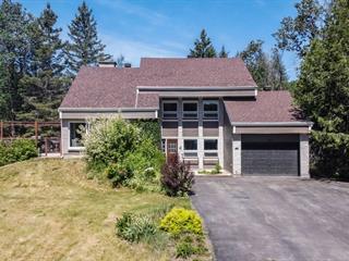 Maison à vendre à Sainte-Adèle, Laurentides, 740, Rue des Campanules, 14583007 - Centris.ca