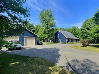 Maison à vendre à Saint-Lucien, Centre-du-Québec, 300, Rue  Cloutier, 23775804 - Centris.ca