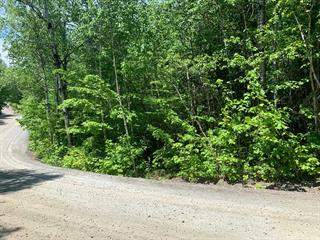Lot for sale in Val-David, Laurentides, Rue  Diana, 12508445 - Centris.ca