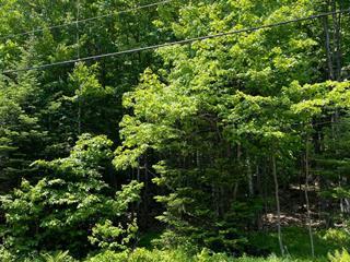 Lot for sale in Sainte-Adèle, Laurentides, Chemin du Lac-Pilon, 28583734 - Centris.ca
