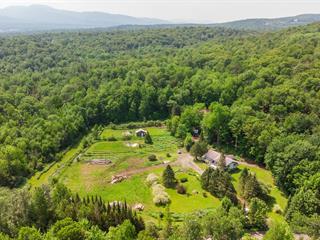 Maison à vendre à Lac-Brome, Montérégie, 60, Chemin  Turner, 27300118 - Centris.ca