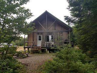 Business for sale in Lac-Matawin, Lanaudière, 01, Lac  Savane, 17309501 - Centris.ca