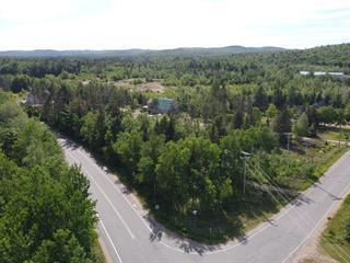 Terrain à vendre à Saint-Élie-de-Caxton, Mauricie, 4050, Route des Lacs, 22283984 - Centris.ca