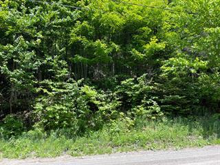 Terrain à vendre à Wentworth-Nord, Laurentides, Chemin  Jackson, 14852206 - Centris.ca
