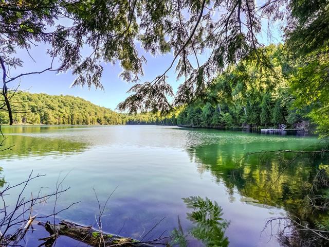 Terrain à vendre à Val-des-Monts, Outaouais, 20, Chemin des Passerins, 11834128 - Centris.ca