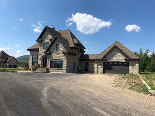 Maison à vendre à Petite-Rivière-Saint-François, Capitale-Nationale, 102, Chemin de la Martine, 10525365 - Centris.ca