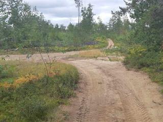 Terre à vendre à L'Isle-aux-Allumettes, Outaouais, Chemin  River, 9886233 - Centris.ca