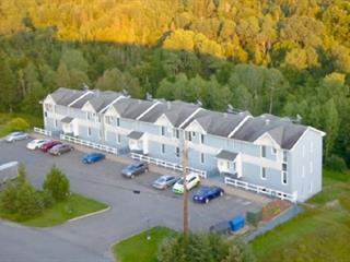 Condo for sale in Saint-Malachie, Chaudière-Appalaches, 203, Chemin de la Montagne, 24604272 - Centris.ca