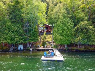 Chalet à vendre à Lac-Sainte-Marie, Outaouais, 81, Chemin  Morin, 21415928 - Centris.ca